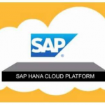 How to Proceed With SAP HANA Migrate?